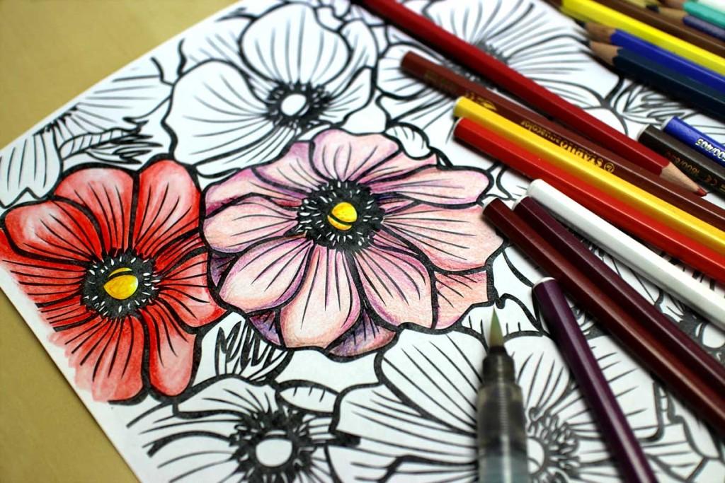 Colorare con le matite