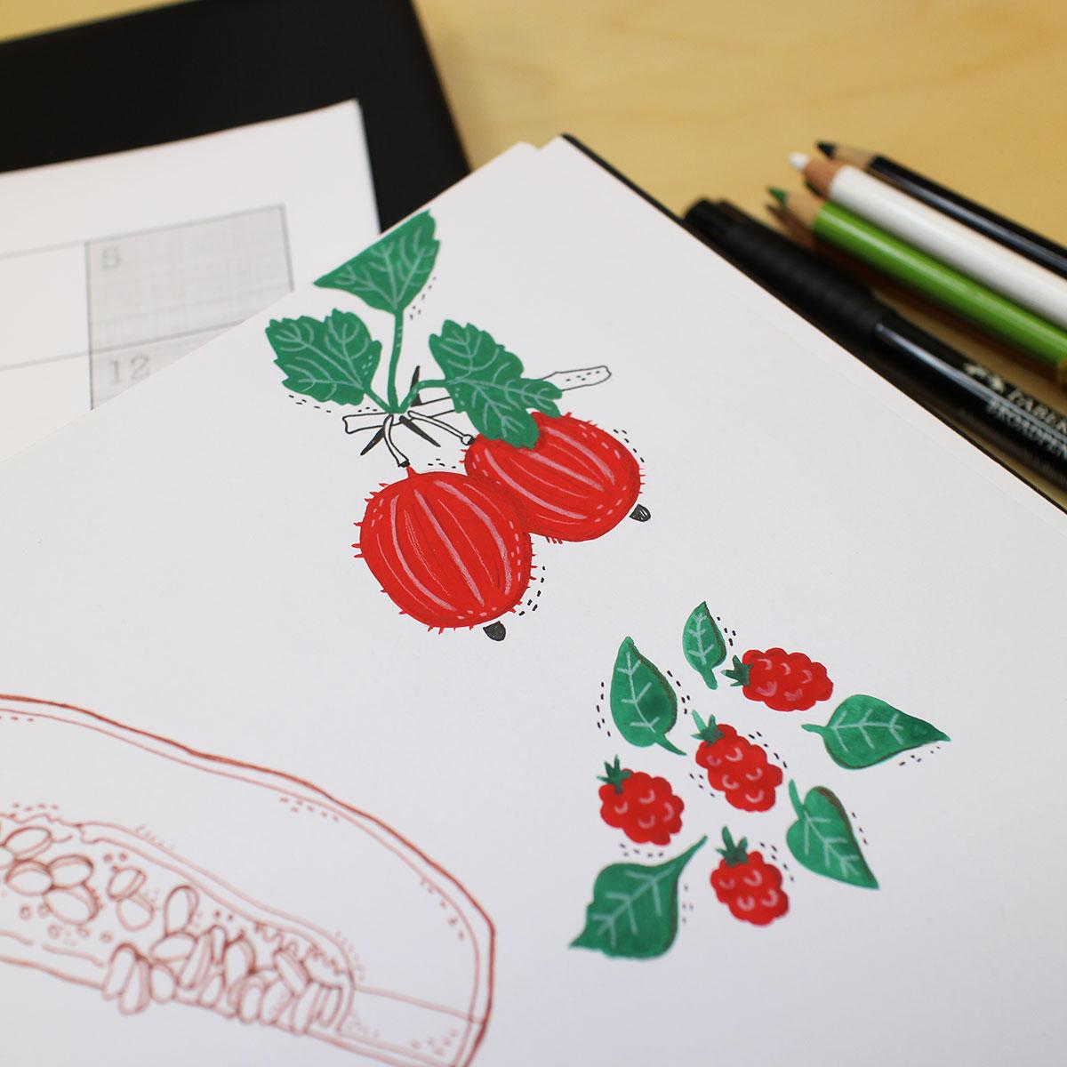 Disegnare fiori e frutti
